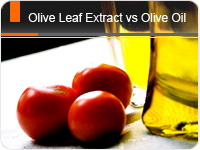 Olive Leaf Extract vs Olive Oil